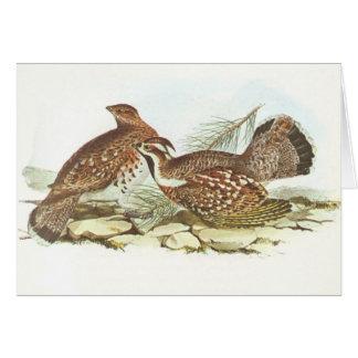 Gould -ハシバミの雌鶏- Tetrastesのbonasia カード