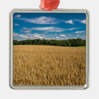 grainfieldおよび青空との景色 メタルオーナメント