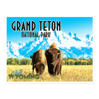 Grand Teton Park Wyoming Vintage Travel Postcard ポストカード