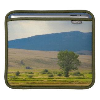 Granite郡モンタナ iPadスリーブ