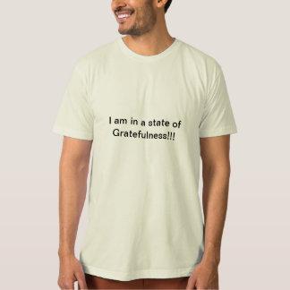 gratefulnessのオーガニックなTシャツの州 Tシャツ