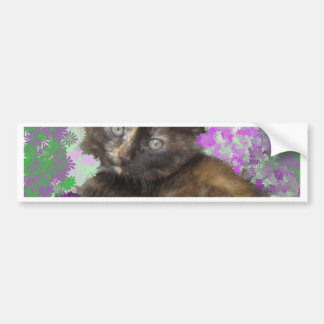 Greeおよび紫色の花のTortoisshellの子ネコ バンパーステッカー