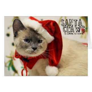 Greyfoot猫の救助のシャムのサンタカード カード