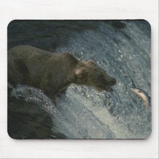 Grizzleyくまのマウスパッド マウスパッド