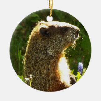 Groundhogのオーナメント セラミックオーナメント
