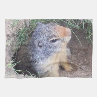 Groundhogの台所タオル キッチンタオル