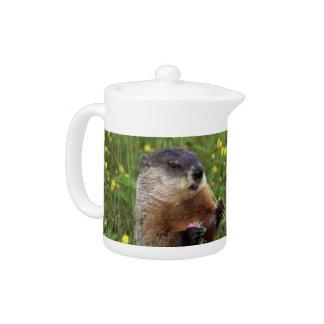 Groundhogの姿勢