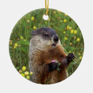Groundhogの姿勢 セラミックオーナメント