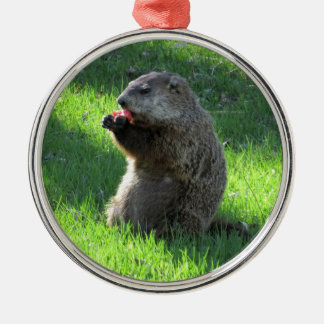 Groundhogの食べ物 メタルオーナメント