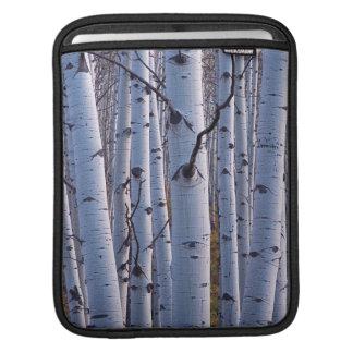 Gunnisonの国立公園の《植物》アスペン iPadスリーブ