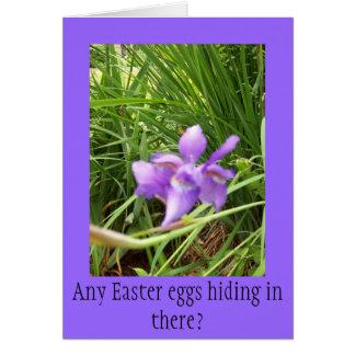 Gwen Billips著紫色のアイリス写真 カード