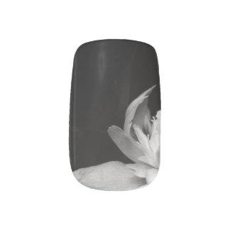H.A.S. Arts nail designs, image detail, Blanc ネイルアート