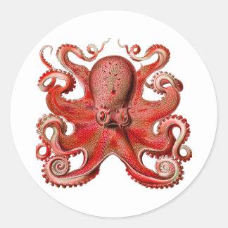 Haeckelのタコの赤 ラウンドシール