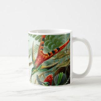 Haeckelのハチドリ コーヒーマグカップ