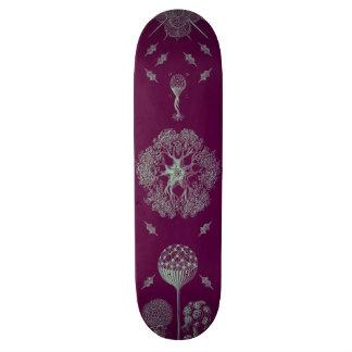 Haeckelの紫色 19.7cm スケートボードデッキ