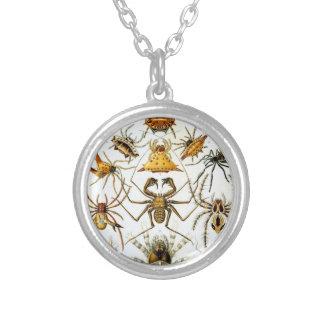 Haeckelの蜘蛛形綱 シルバープレートネックレス