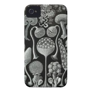 HaeckelのiPhoneの場合- Mycetozoa Case-Mate iPhone 4 ケース