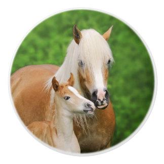 Haflingerの馬の装飾的なかわいい子馬のキスのミイラ- セラミックノブ