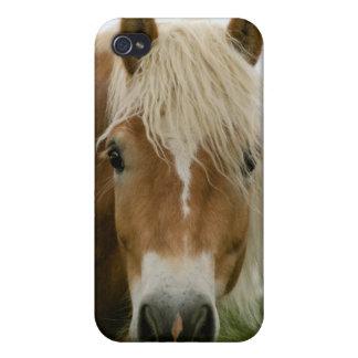 haflingerの馬頭部 iPhone 4/4Sケース