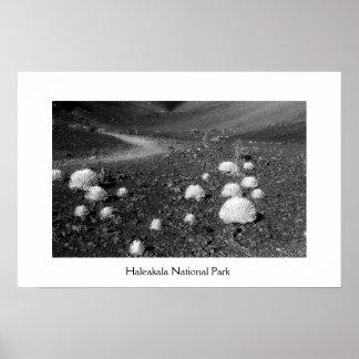 Haleakalaの国立公園 ポスター