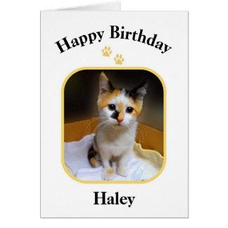 Haleyのさらさの子ネコのハッピーバースデー カード