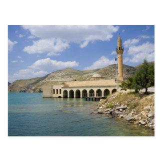 Halfeti Merkez Camiiの中央モスク)部分的に ポストカード