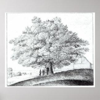 Hampstead 1663年の空木 ポスター