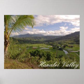 Hanaleiの谷 ポスター