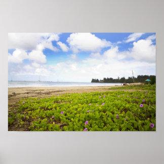 Hanalei湾、カウアイ島ハワイのビーチの花 ポスター