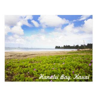 Hanalei湾、カウアイ島ハワイの熱帯ビーチ場面 ポストカード
