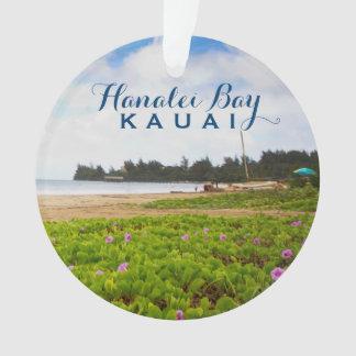 Hanalei湾、カウアイ島ハワイ2の写真 オーナメント