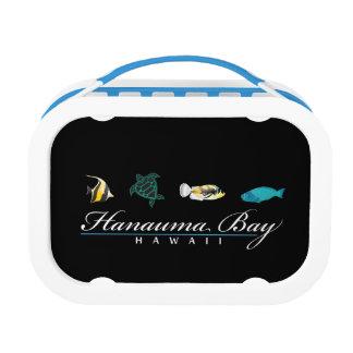 Hanaum湾のハワイのカメ ランチボックス