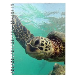 Hanauma湾のハワイのカメ ノートブック