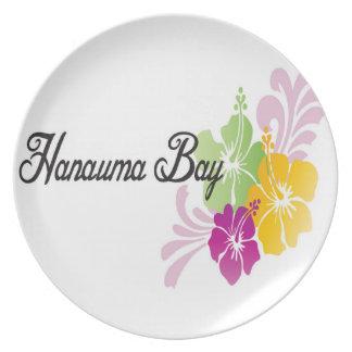 HANAUMA湾ハワイ-ハイビスカスの花 プレート