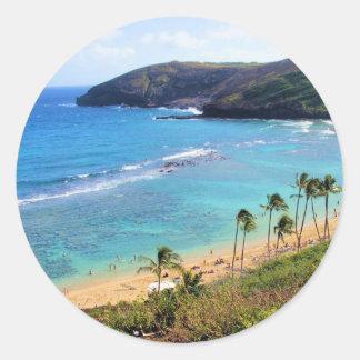 Hanauma湾、ホノルル、オアフ、ハワイの眺め ラウンドシール