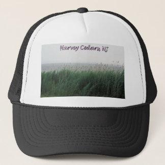 Harveyのヒマラヤスギ、NJ:  芝生またはリードが付いている湾 キャップ