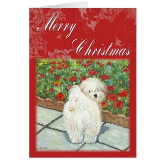 Havaneseのケシのクリスマスギフトおよびカード カード