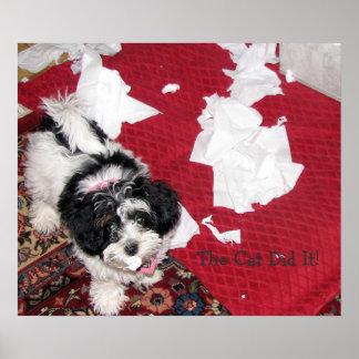 Havaneseの子犬 ポスター