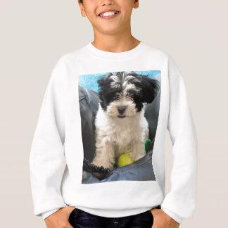 Havaneseの救助の子犬の白黒 スウェットシャツ