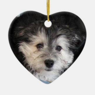 Havaneseの救助の子犬 セラミックオーナメント
