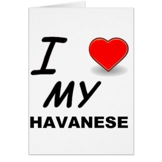 havanese愛 カード