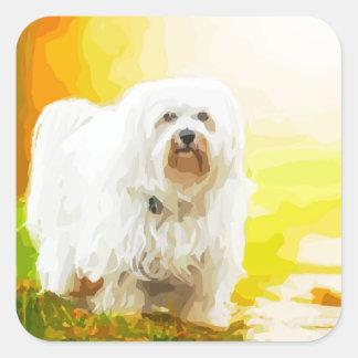 Havanese犬のBichonのポートレート スクエアシール