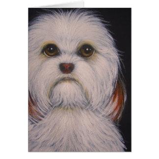 HAVANESE犬は挨拶状をカスタマイズ カード