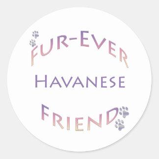 Havanese Furever ラウンドシール