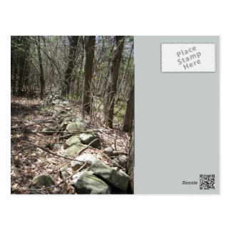 HAVERHILLの多くの迷彩柄の石ライン ポストカード