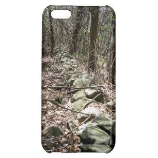 HAVERHILLのMAの迷彩柄の石ライン iPhone5Cケース