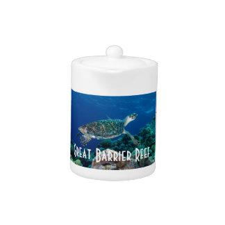 Hawksbillのウミガメのグレート・バリア・リーフの珊瑚海