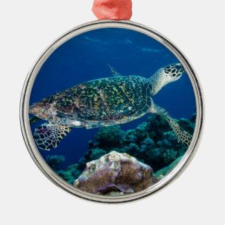 Hawksbillのウミガメのグレート・バリア・リーフの珊瑚海 メタルオーナメント