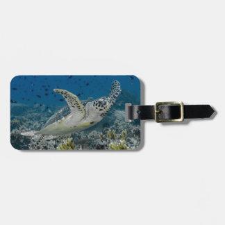 Hawksbillのウミガメの水泳 ラゲッジタグ