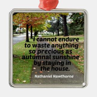 Hawthorne著引用文: 私は無駄になるために耐えることができません メタルオーナメント